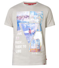 D555 t-shirt grote maat beige California Surfin Santa Monica