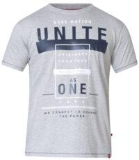 D555 t-shirt grote maat grijs Nation Unite