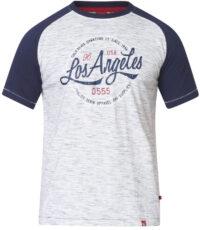 D555 t-shirt grote maat grijs met blauwe mouw Los Angeles
